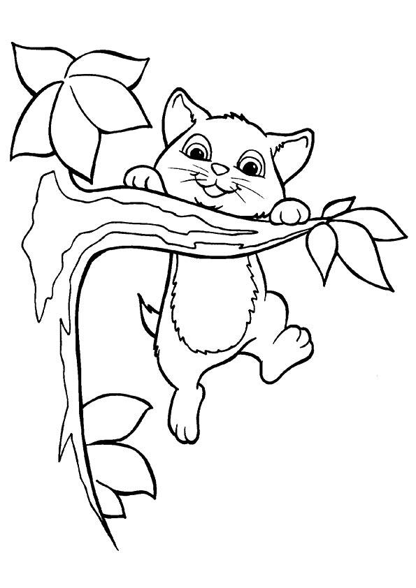 Disegni Di Gatti Da Colorare E Stampare Gratis Gattino Su Ramo