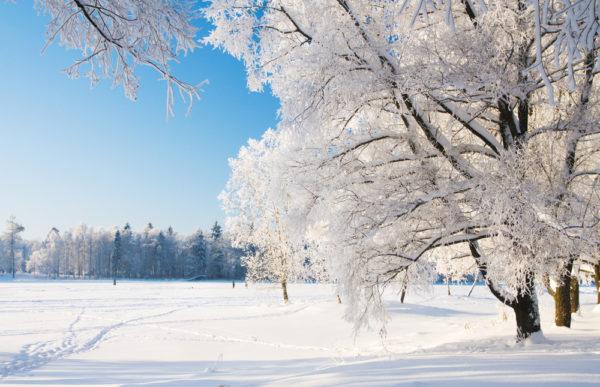 filastrocche sulla neve