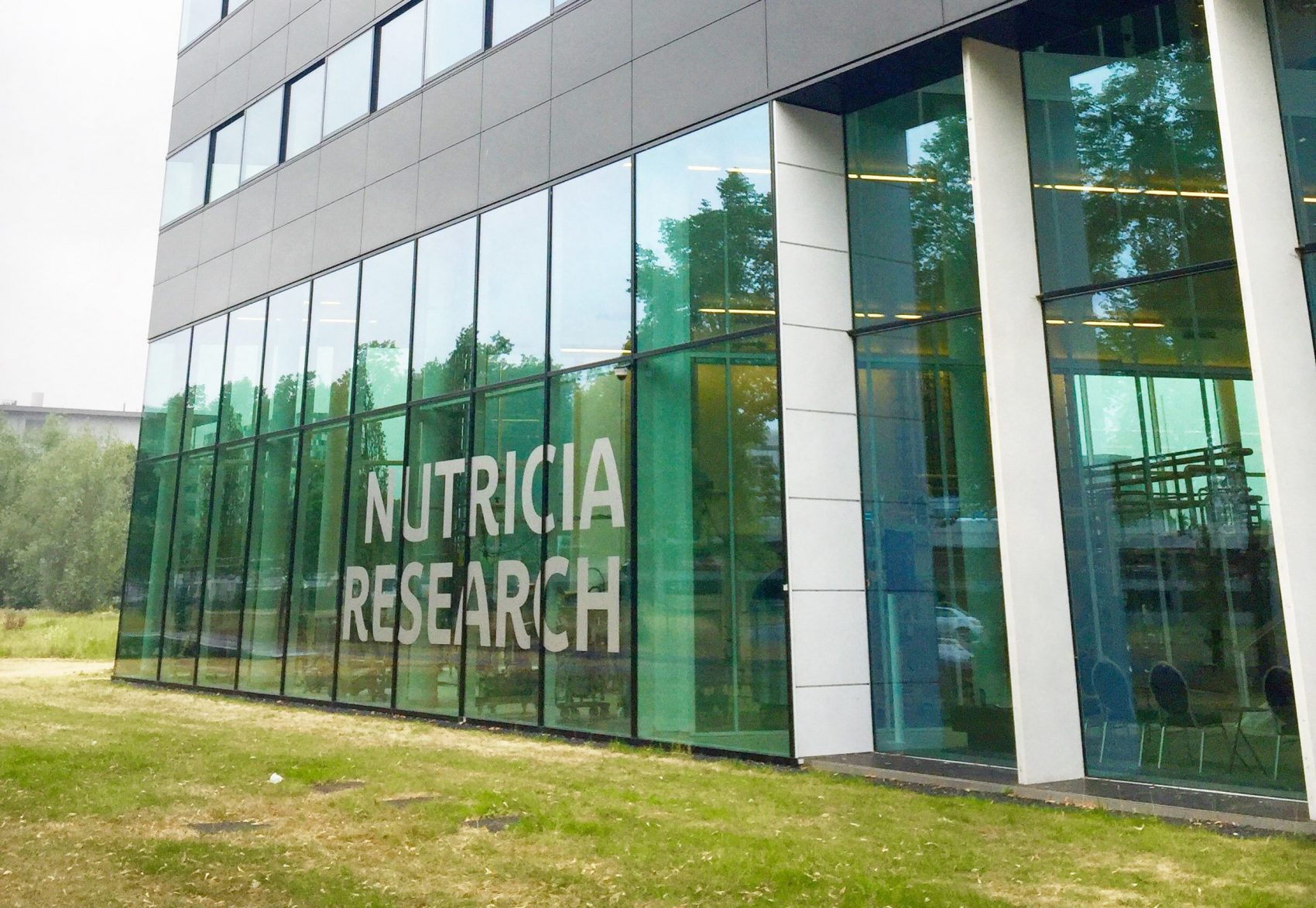 nutricia research latte materno