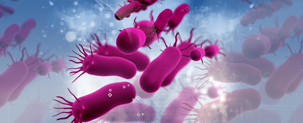 Mycobacterium chimaera