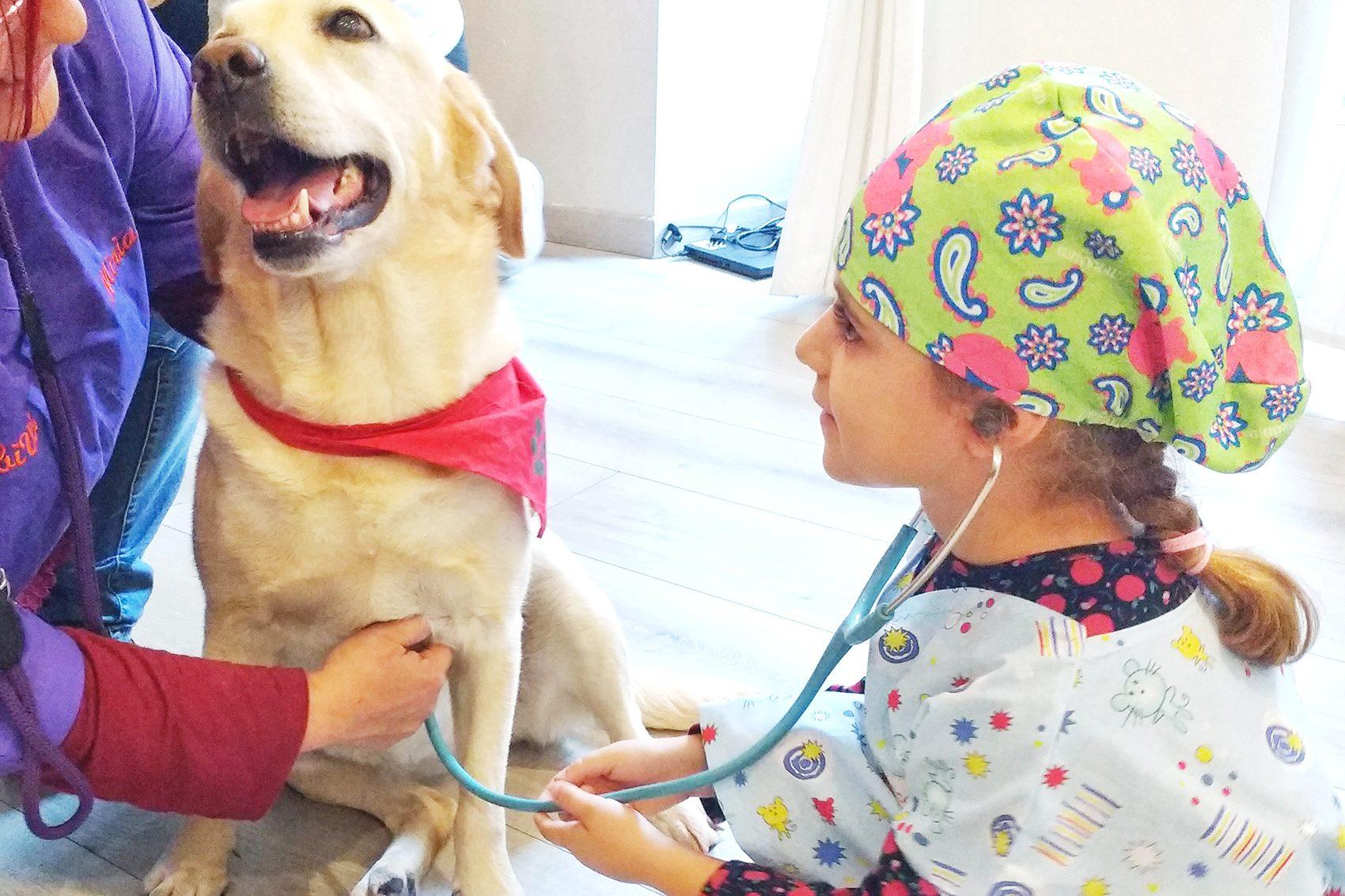 diabete nei cani e nei gatti _bambina con Britte