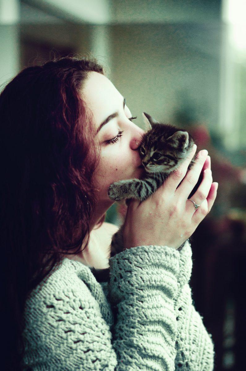 Baciare cani e gatti