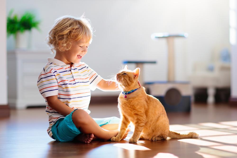 animale domestico e bambini