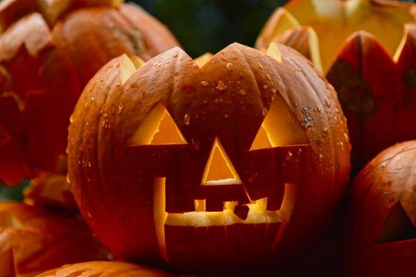 zucche intagliate per festeggiare halloween con i bambini