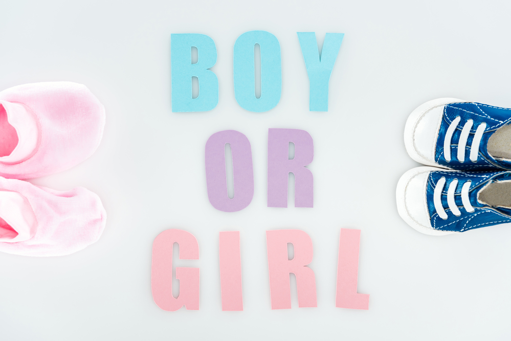 maschio o femmina