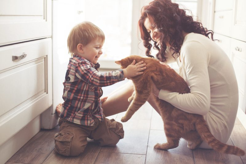 animali domestici in famiglia