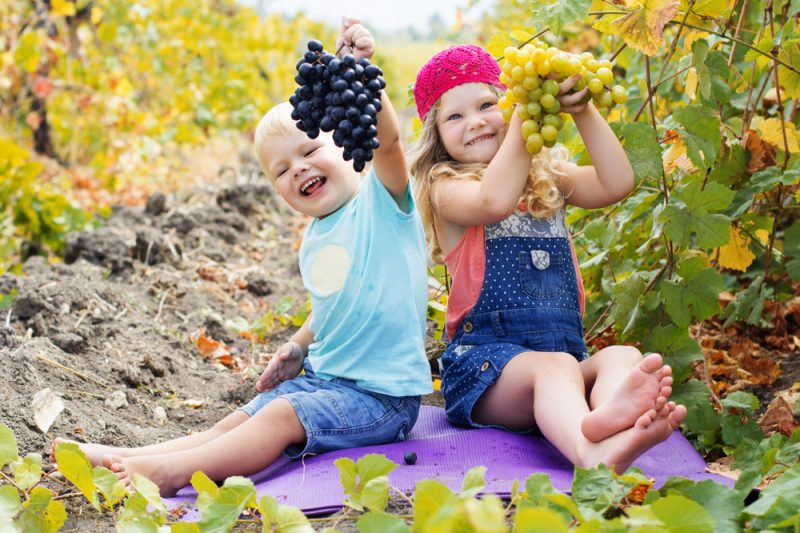 uva ai bambini
